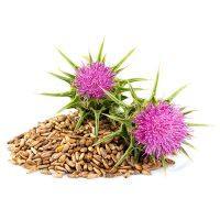Ulei din semințe de armurariu