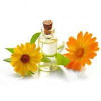 Calendula officinalis essential oil