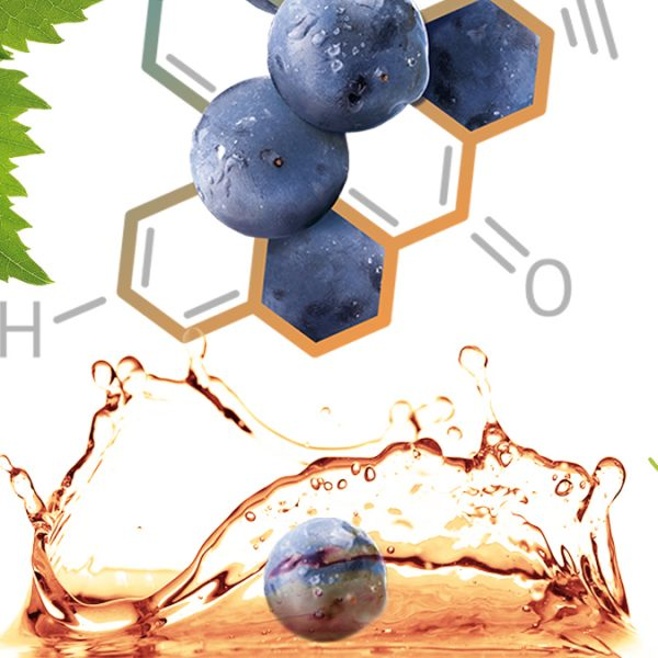 ViephenolTM – уникальный антиоксидантный комплекс для вашей кожи
