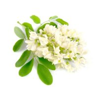 White acacia flower extract
